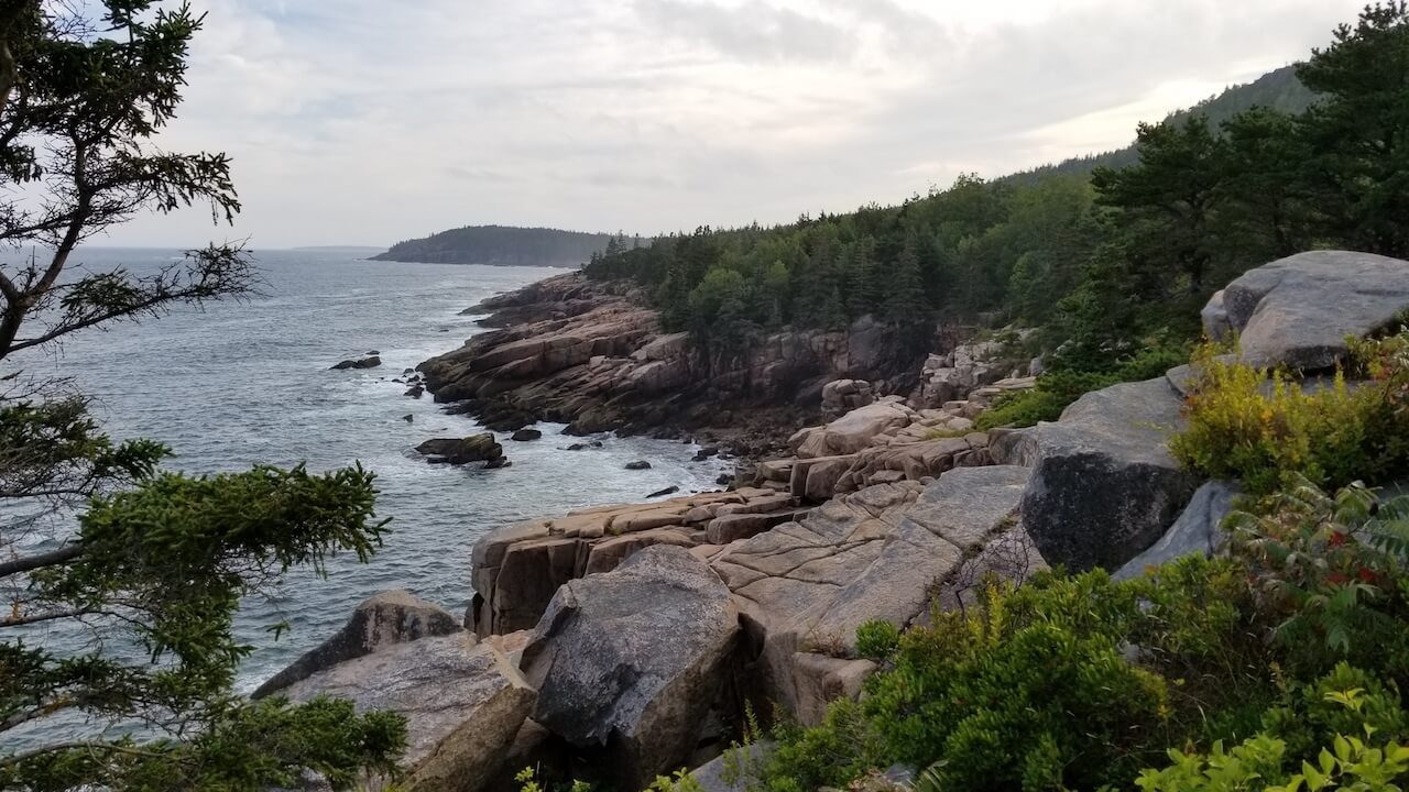 Rocky cliff with trees and oceans Acadia National Park
