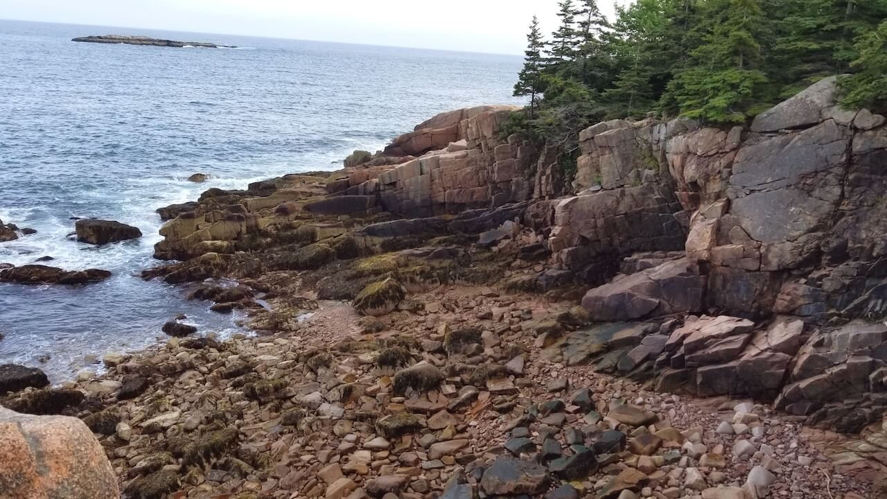 rocky beach with trees and ocean Acadia National Park