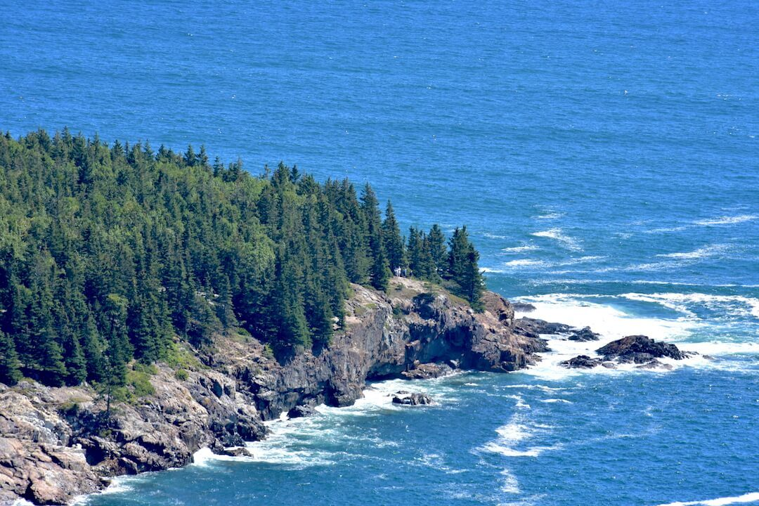 Coastal Maine with green trees