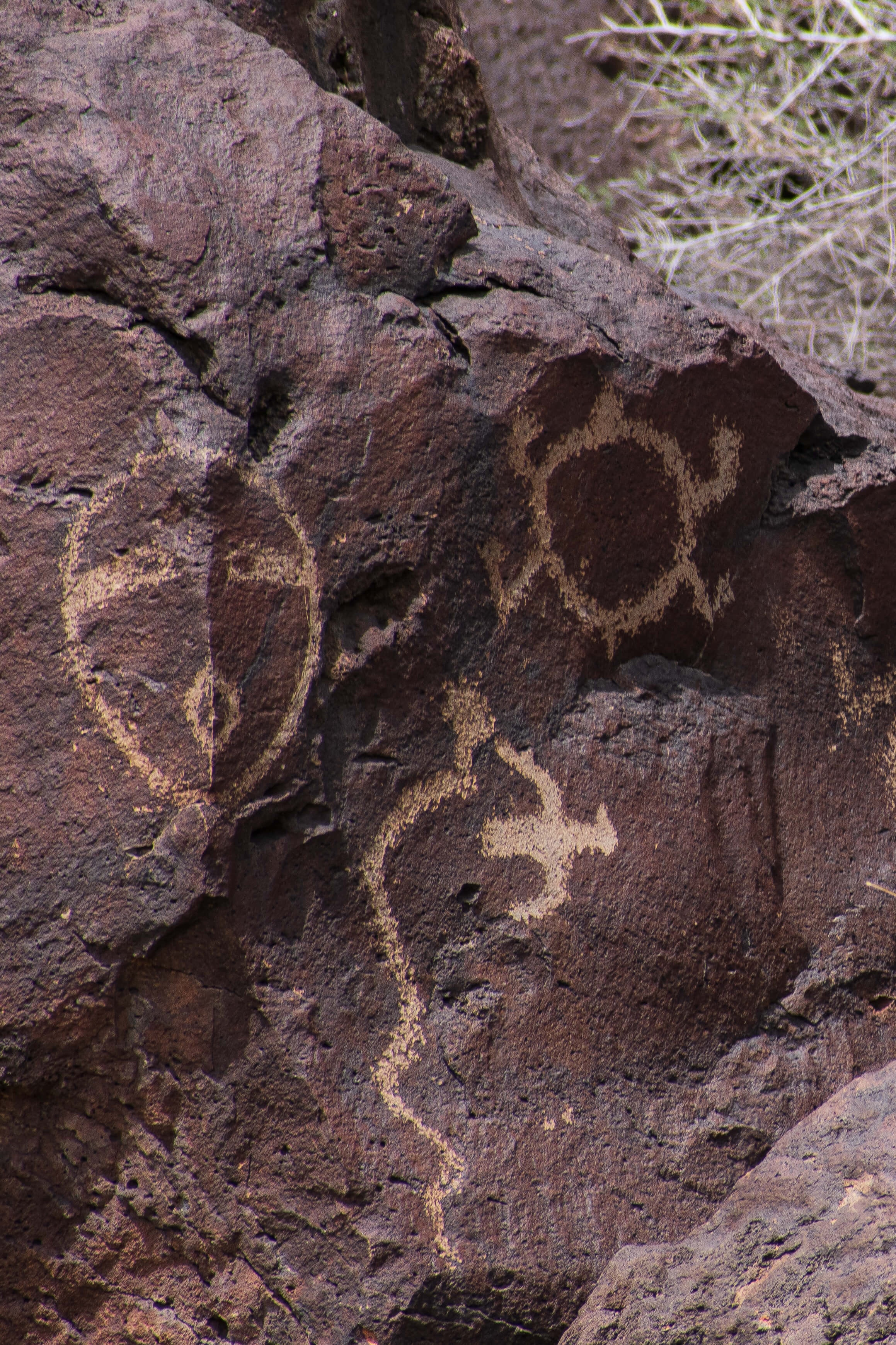 Mask, Bird, Snake Petroglyph New Mexico