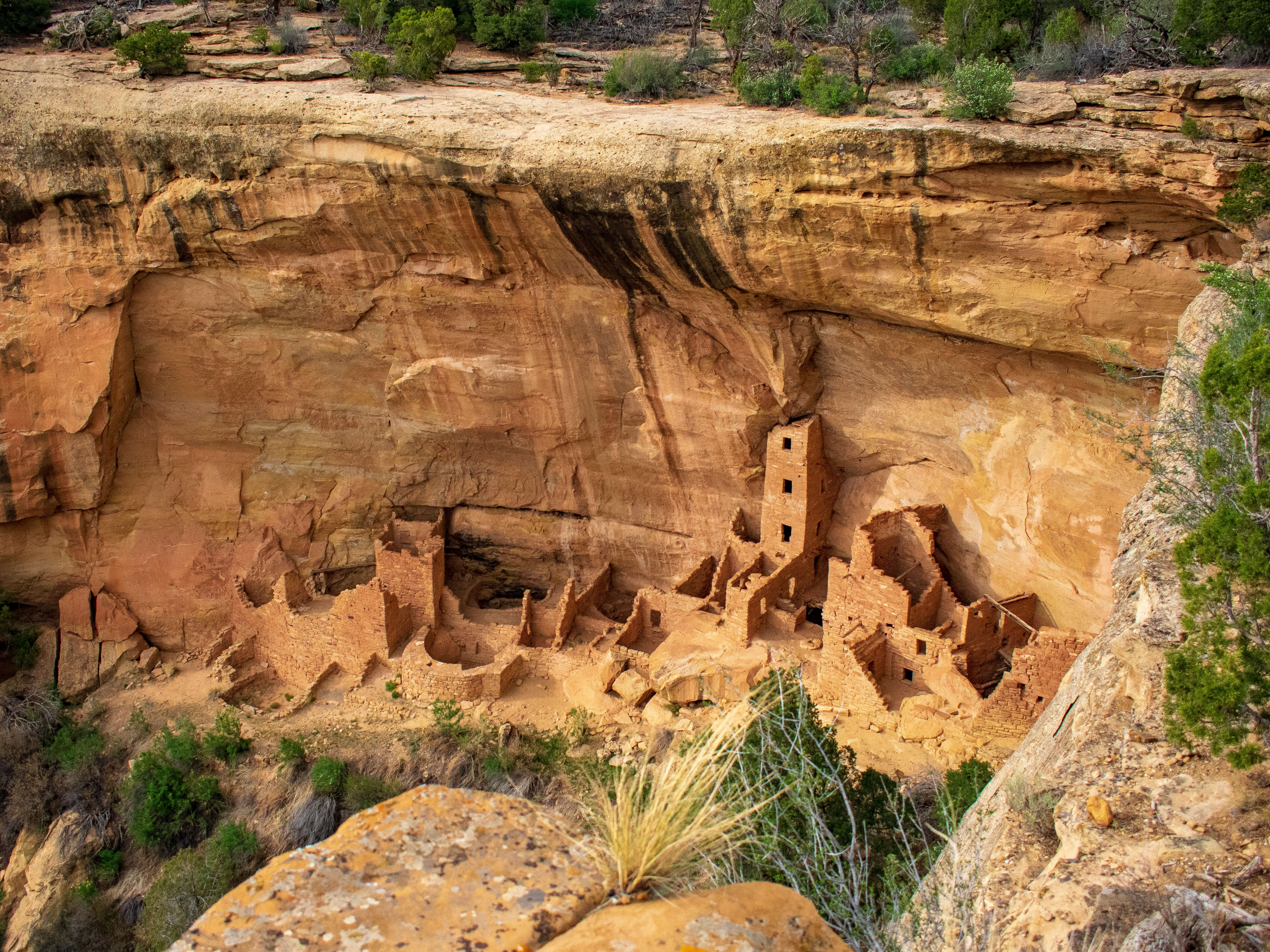 Cliff Dwellings Mesa Verde